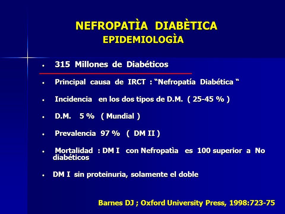 NEFROPATÌA DIABÈTICA EPIDEMIOLOGÌA NEFROPATÌA DIABÈTICA EPIDEMIOLOGÌA 315 Millones de Diabéticos 315 Millones de Diabéticos Principal causa de IRCT :