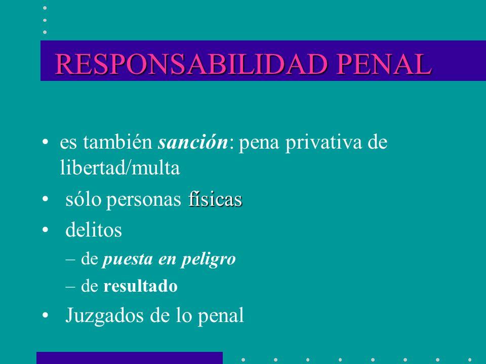RESPONSABILIDAD PENAL es también sanción: pena privativa de libertad/multa físicas sólo personas físicas delitos –de puesta en peligro –de resultado J