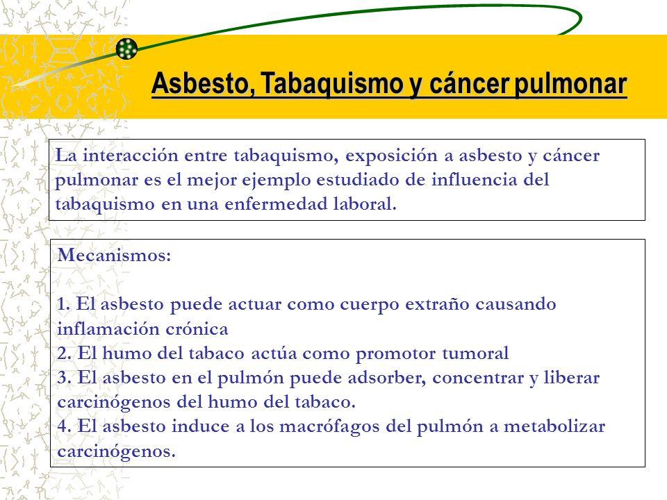 Asbesto, Tabaquismo y cáncer pulmonar La interacción entre tabaquismo, exposición a asbesto y cáncer pulmonar es el mejor ejemplo estudiado de influen