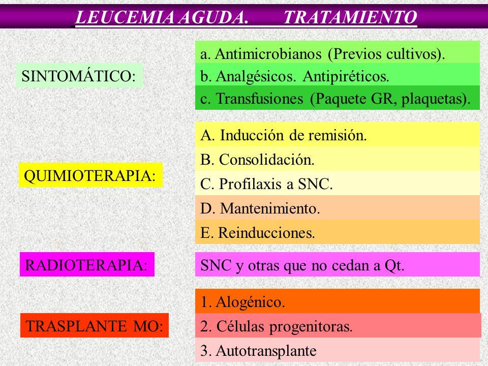 LEUCEMIA AGUDA. TRATAMIENTO SINTOMÁTICO: a. Antimicrobianos (Previos cultivos). b. Analgésicos. Antipiréticos. c. Transfusiones (Paquete GR, plaquetas