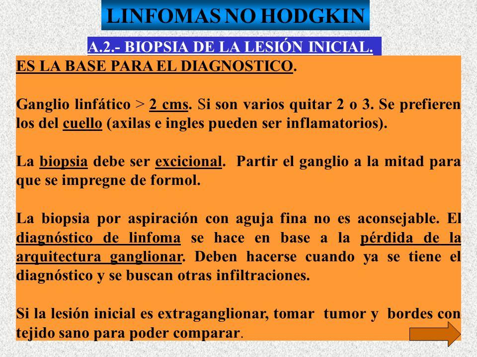 A.2.- BIOPSIA DE LA LESIÓN INICIAL. ES LA BASE PARA EL DIAGNOSTICO. Ganglio linfático > 2 cms. Si son varios quitar 2 o 3. Se prefieren los del cuello