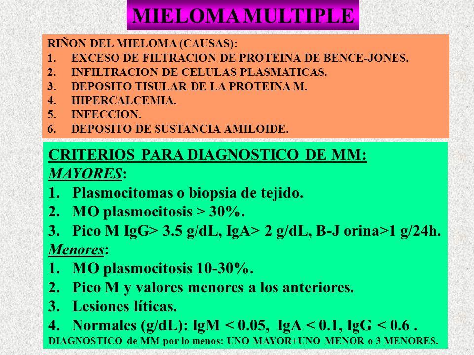 MIELOMA MULTIPLE RIÑON DEL MIELOMA (CAUSAS): 1.EXCESO DE FILTRACION DE PROTEINA DE BENCE-JONES. 2.INFILTRACION DE CELULAS PLASMATICAS. 3.DEPOSITO TISU