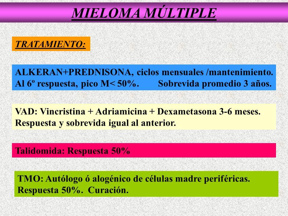 MIELOMA MÚLTIPLE TRATAMIENTO: ALKERAN+PREDNISONA, ciclos mensuales /mantenimiento. Al 6º respuesta, pico M< 50%. Sobrevida promedio 3 años. VAD: Vincr