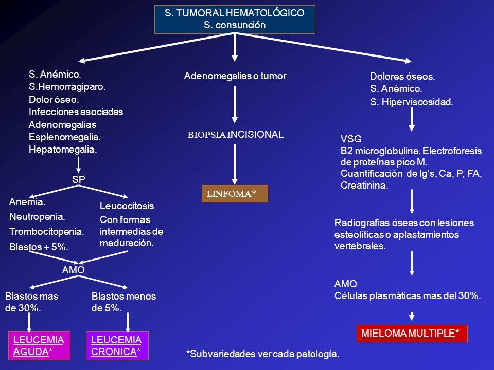 S. TUMORAL HEMATOLÓGICO S. consunción S. Hiperviscosidad. Adenomegalias o tumor Dolores óseos. Infecciones asociadas Hepatomegalia. Esplenomegalia. Do