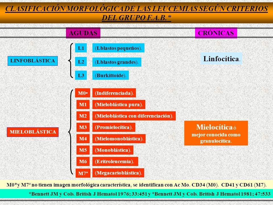 CLASIFICACIÓN MORFOLÓGICA DE LAS LEUCEMIAS SEGÚN CRITERIOS DEL GRUPO F.A.B.* AGUDASCRÓNICAS LINFOBLÁSTICA MIELOBLÁSTICA L1(Lblastos pequeños). L2 (Lbl