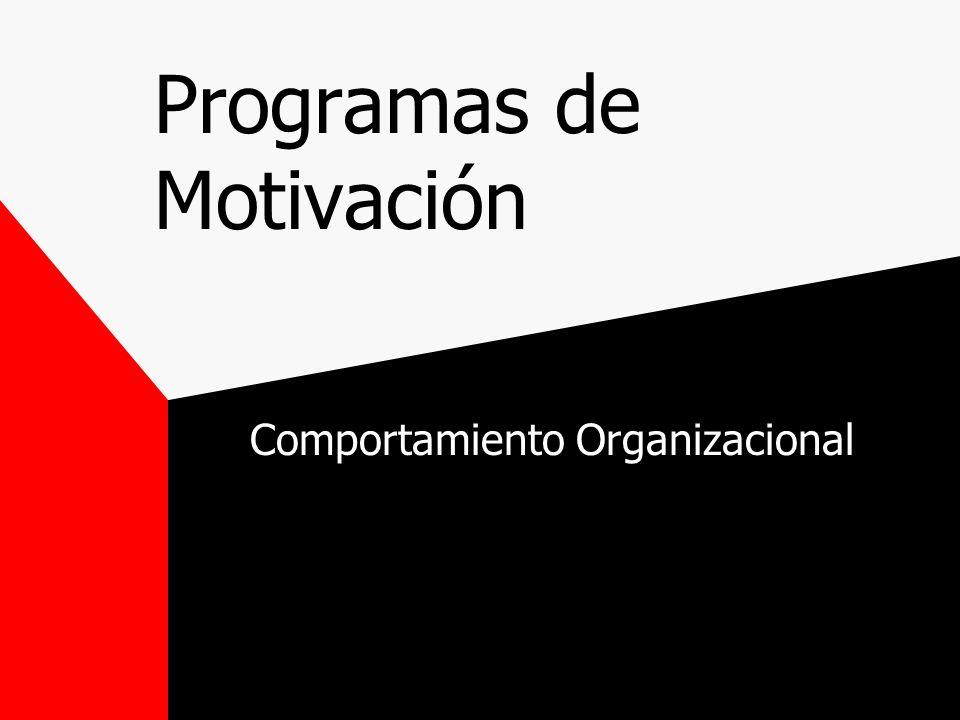 Programas de Motivación Comportamiento Organizacional