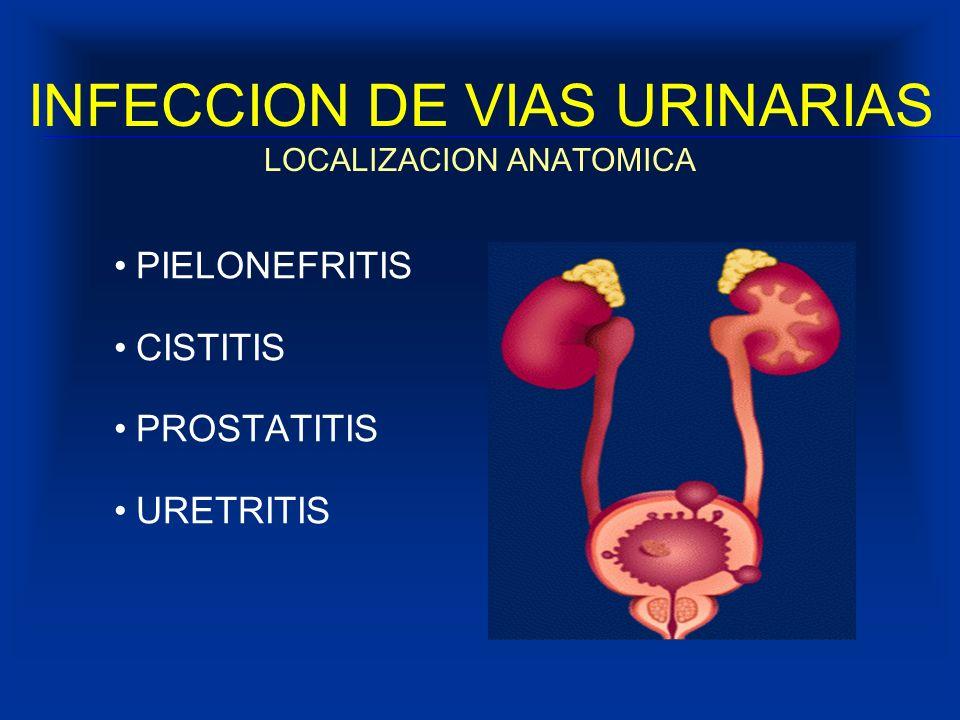 INFECCION DE VIAS URINARIAS LOCALIZACION ANATOMICA PIELONEFRITIS CISTITIS PROSTATITIS URETRITIS