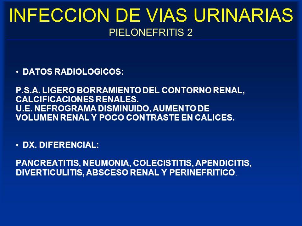 INFECCION DE VIAS URINARIAS PIELONEFRITIS 2 DATOS RADIOLOGICOS: P.S.A. LIGERO BORRAMIENTO DEL CONTORNO RENAL, CALCIFICACIONES RENALES. U.E. NEFROGRAMA