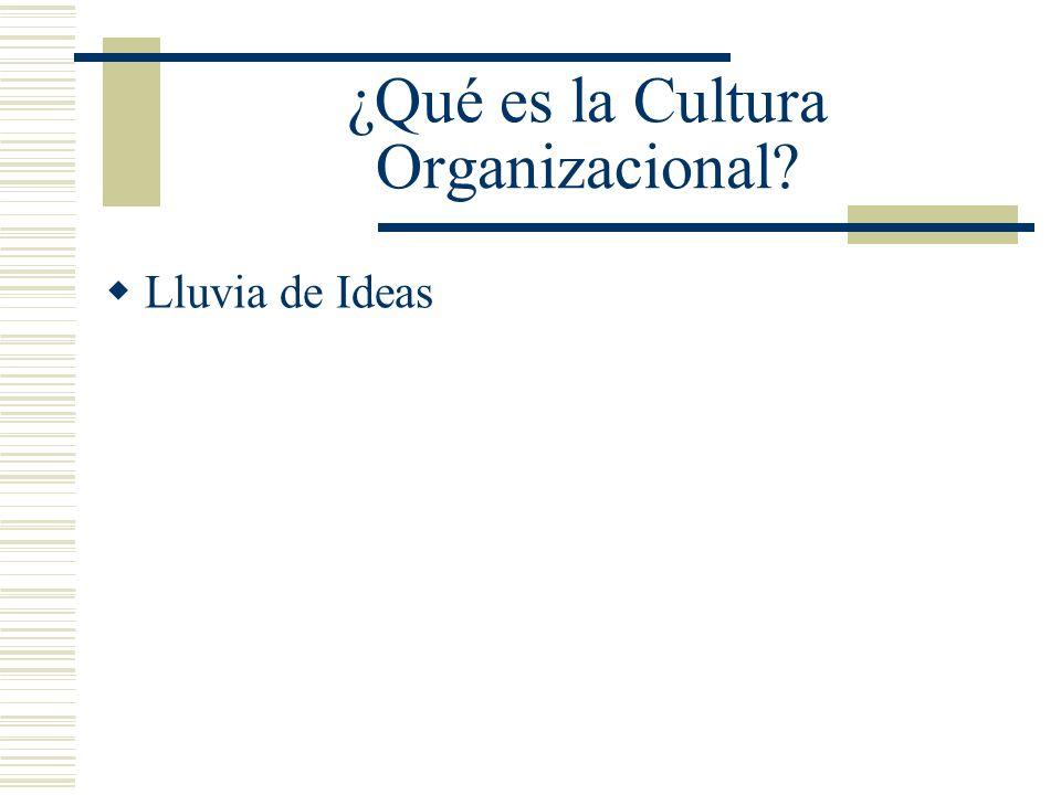 ¿Qué es la Cultura Organizacional? Lluvia de Ideas