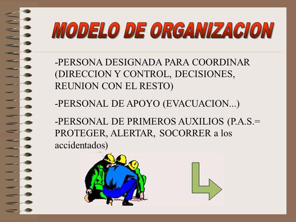 -PERSONA DESIGNADA PARA COORDINAR (DIRECCION Y CONTROL, DECISIONES, REUNION CON EL RESTO) -PERSONAL DE APOYO (EVACUACION...) -PERSONAL DE PRIMEROS AUX