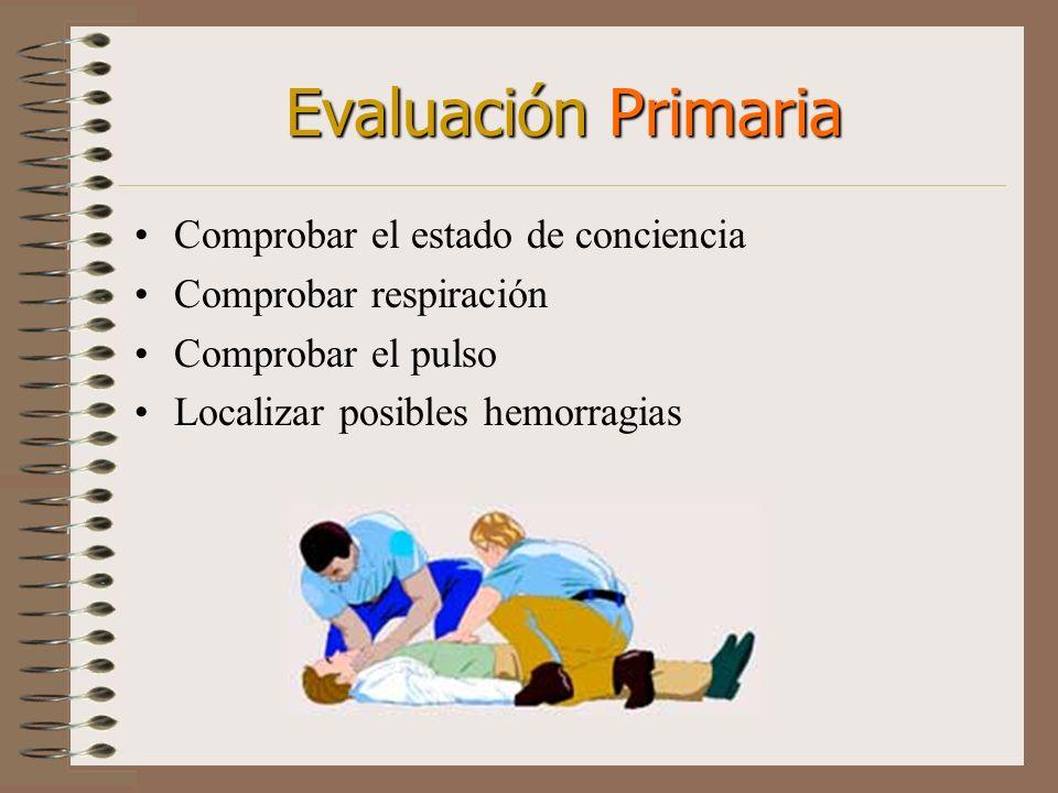 Evaluación Primaria Comprobar el estado de conciencia Comprobar respiración Comprobar el pulso Localizar posibles hemorragias
