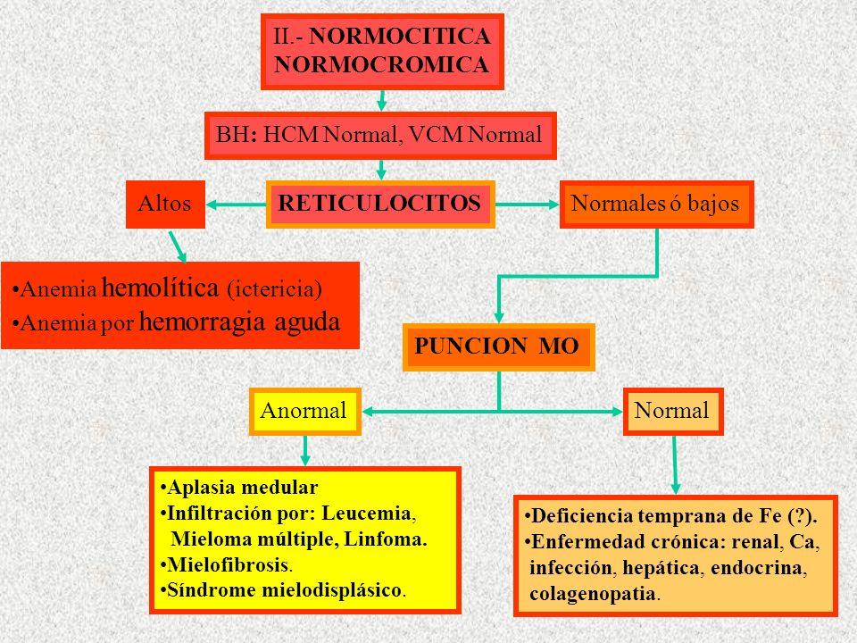 II.- NORMOCITICA NORMOCROMICA BH: HCM Normal, VCM Normal RETICULOCITOS Altos Normales ó bajos Anemia hemolítica (ictericia) Anemia por hemorragia aguda PUNCION MO Anormal Aplasia medular Infiltración por: Leucemia, Mieloma múltiple, Linfoma.