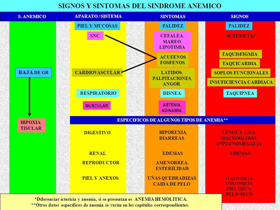 ETAPAS DE LA HIPOFERREMIA I.- Hipoferremia (SUBCLINICA).