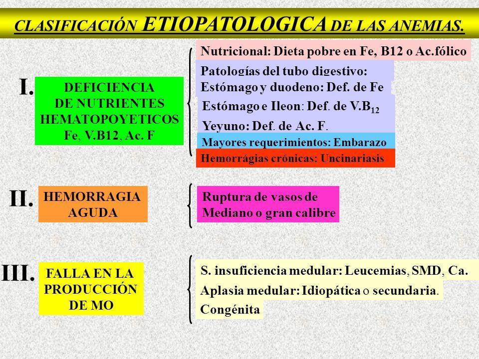 Vitamina B12 Nucleósidos PO 2 H 2 Nucleótidos Proteínas Nucleoproteinas Ribosa o desoxirribosa Ácido fólico Ácido folínico Síntesis de las Purinas y pirimidinas + + +