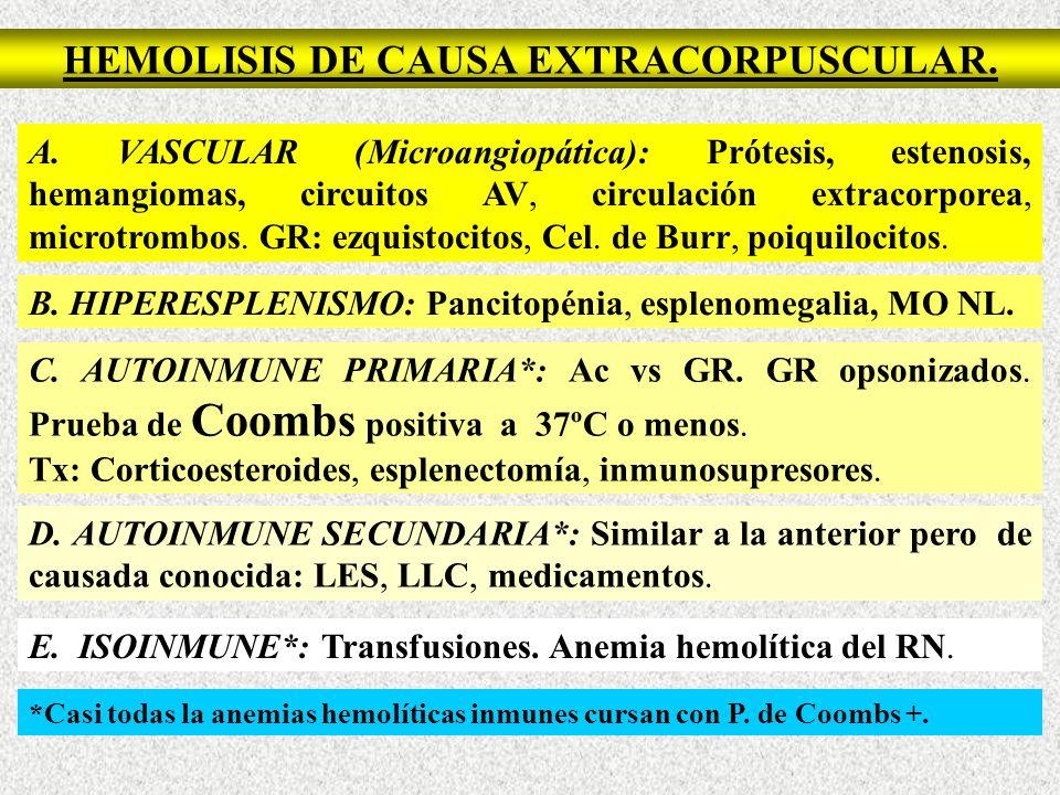 HEMOLISIS DE CAUSA EXTRACORPUSCULAR.A.