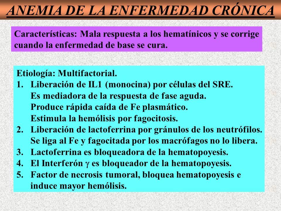 Características: Mala respuesta a los hematínicos y se corrige cuando la enfermedad de base se cura.