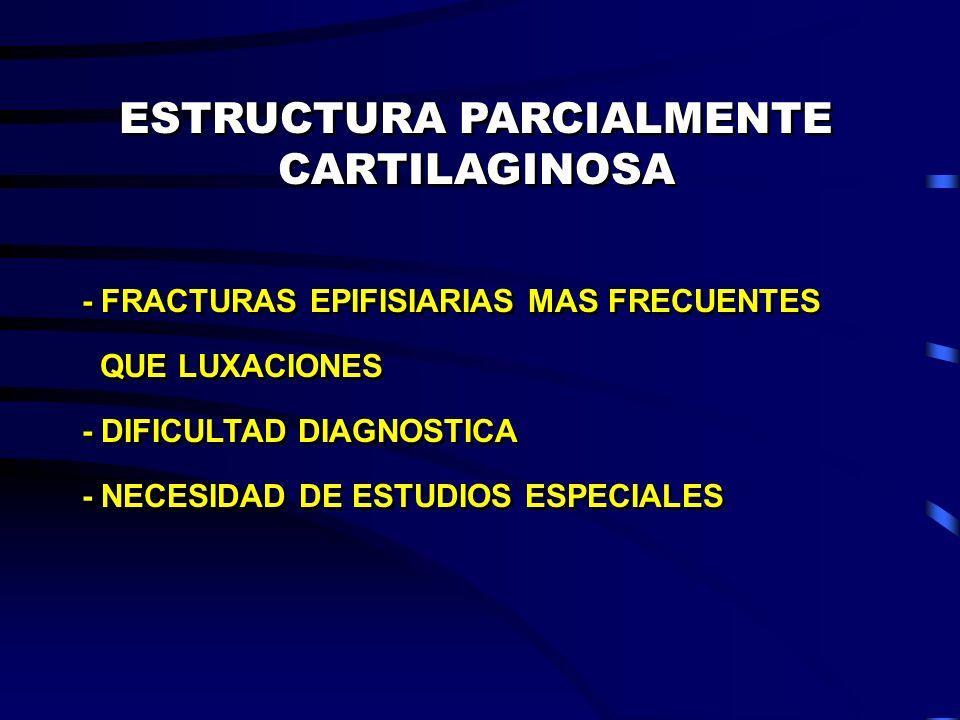 ESTRUCTURA PARCIALMENTE CARTILAGINOSA - FRACTURAS EPIFISIARIAS MAS FRECUENTES QUE LUXACIONES - DIFICULTAD DIAGNOSTICA - NECESIDAD DE ESTUDIOS ESPECIAL