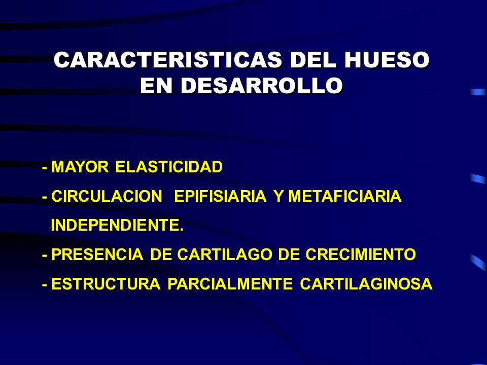 CARACTERISTICAS DEL HUESO EN DESARROLLO - MAYOR ELASTICIDAD - CIRCULACION EPIFISIARIA Y METAFICIARIA INDEPENDIENTE. - PRESENCIA DE CARTILAGO DE CRECIM