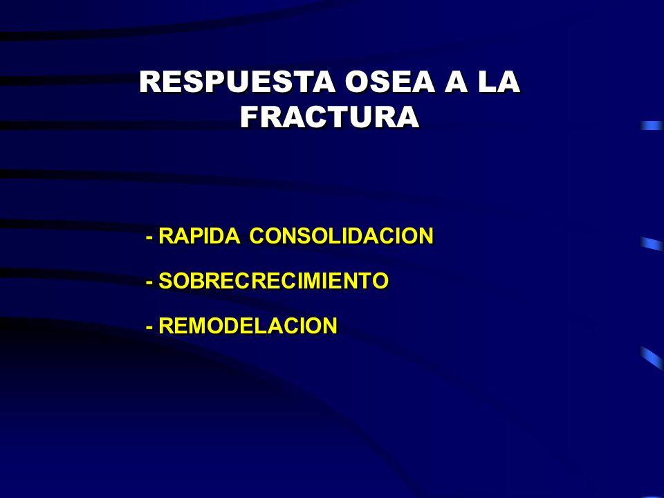 RESPUESTA OSEA A LA FRACTURA - RAPIDA CONSOLIDACION - SOBRECRECIMIENTO - REMODELACION - RAPIDA CONSOLIDACION - SOBRECRECIMIENTO - REMODELACION