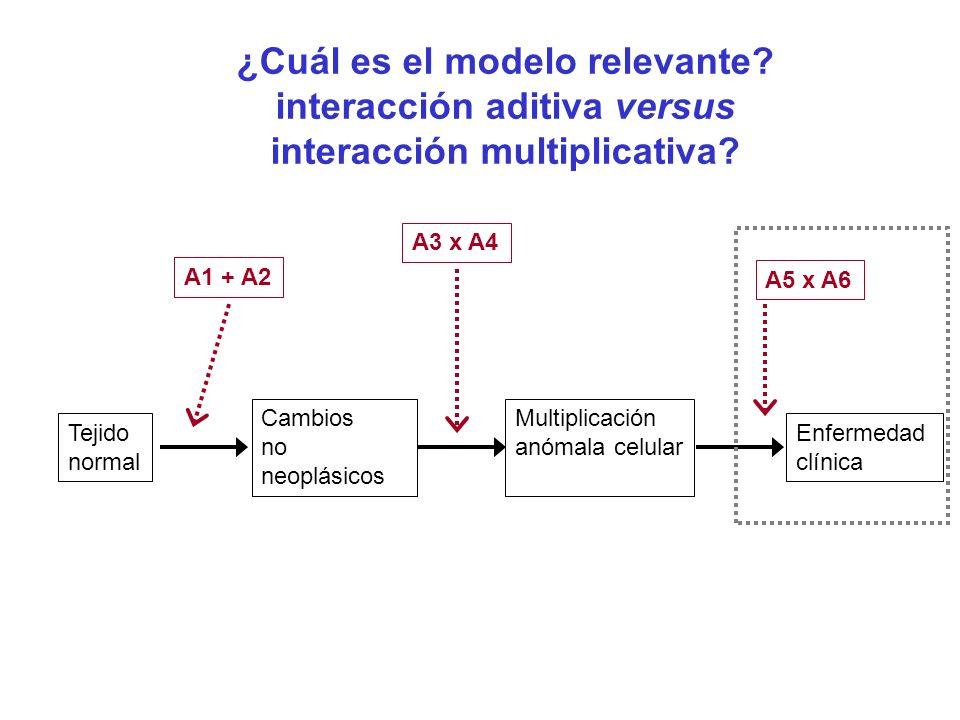 ¿Cuál es el modelo relevante? interacción aditiva versus interacción multiplicativa? Tejido normal Cambios no neoplásicos Multiplicación anómala celul