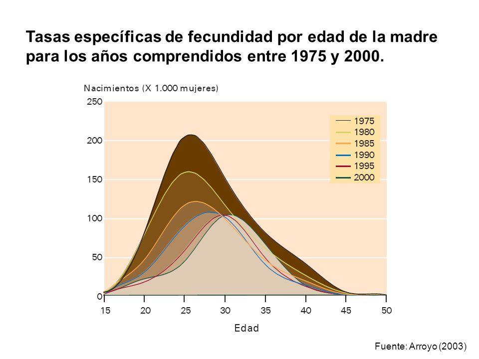 Fuente: Arroyo (2003) Tasas específicas de fecundidad por edad de la madre para los años comprendidos entre 1975 y 2000.