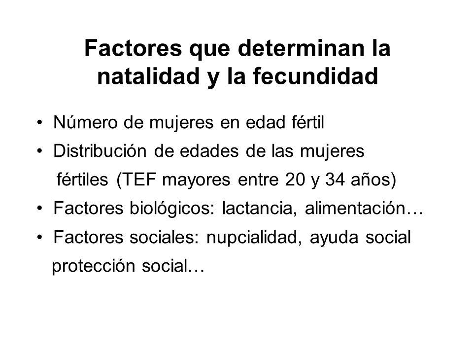 Factores que determinan la natalidad y la fecundidad Número de mujeres en edad fértil Distribución de edades de las mujeres fértiles (TEF mayores entr