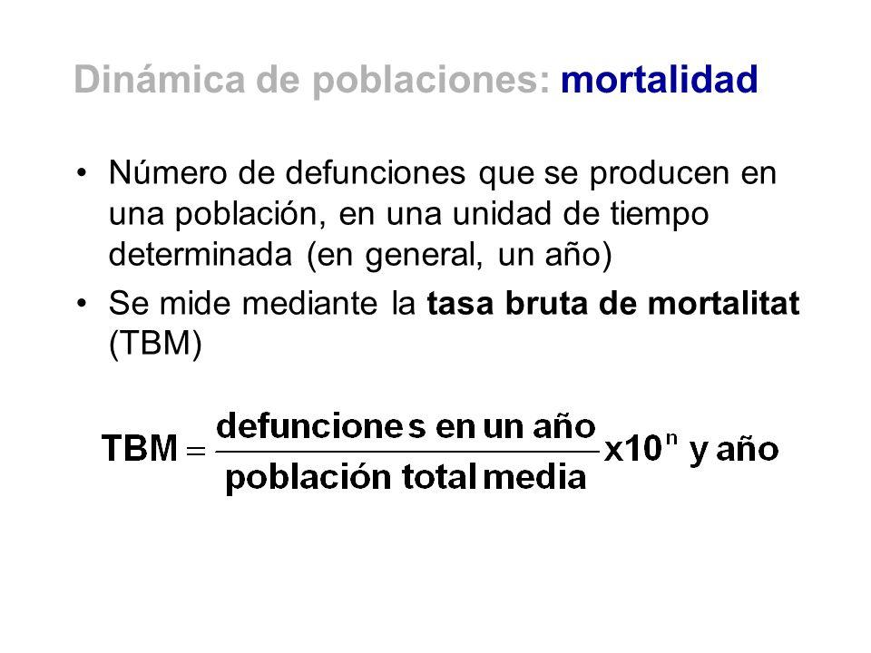 Tasa bruta de natalidad. España, 1975-2002 Fuente: Arroyo (2003)