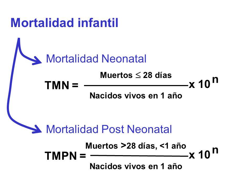 Mortalidad infantil Muertos 28 días Nacidos vivos en 1 año TMN = x 10 n Mortalidad Neonatal Muertos > 28 días, <1 año Nacidos vivos en 1 año TMPN = x