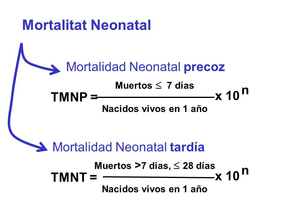 Mortalitat Neonatal Muertos > 7 días, 28 días Nacidos vivos en 1 año TMNT = x 10 n Mortalidad Neonatal tardía Muertos 7 días Nacidos vivos en 1 año TM
