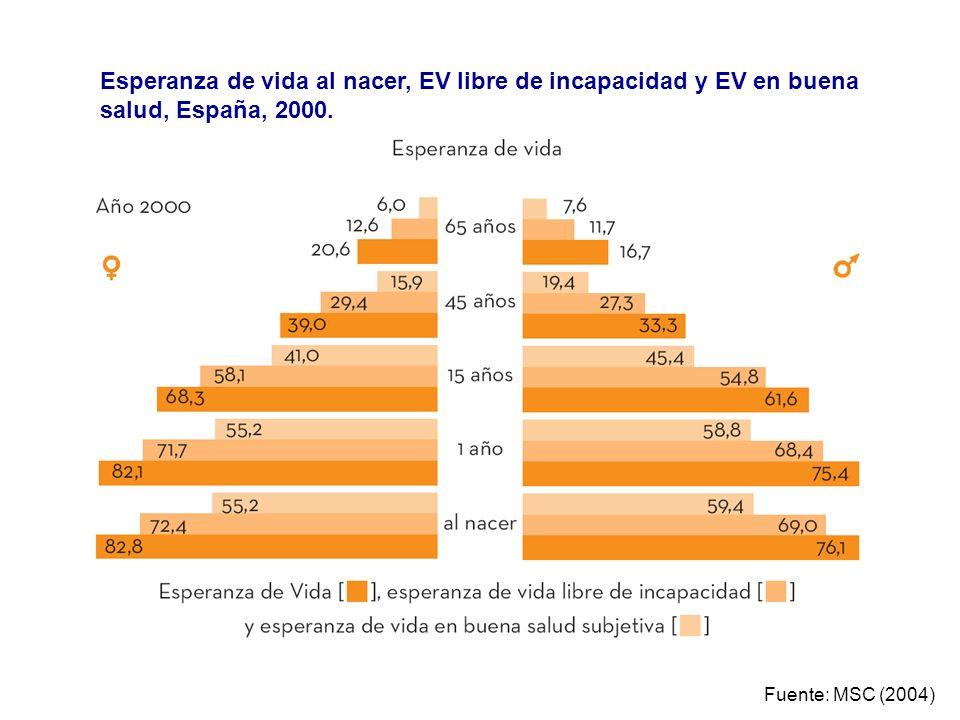 Fuente: MSC (2004) Esperanza de vida al nacer, EV libre de incapacidad y EV en buena salud, España, 2000.