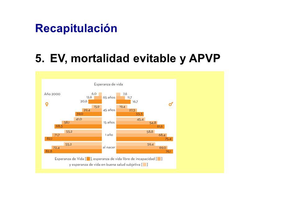 Recapitulación 5.EV, mortalidad evitable y APVP