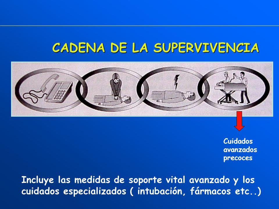 PERMEABILICE VÍA AÉREA COMPRUEBE RESPIRACIÓN 2 VENTILACIONES COMPRUEBE SIGNOS DE CIRCULACIÓN R.