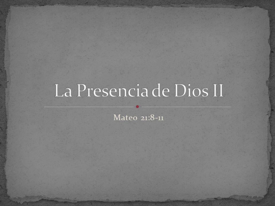 Mateo 21:8-11