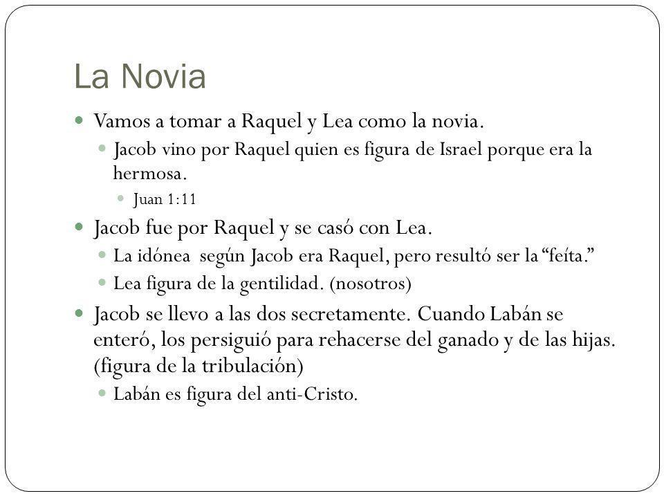 La Novia Vamos a tomar a Raquel y Lea como la novia. Jacob vino por Raquel quien es figura de Israel porque era la hermosa. Juan 1:11 Jacob fue por Ra