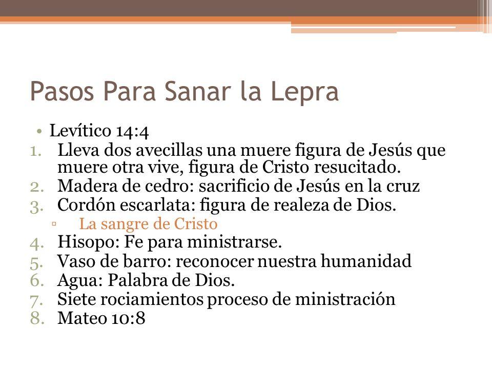 Pasos Para Sanar la Lepra Levítico 14:4 1.Lleva dos avecillas una muere figura de Jesús que muere otra vive, figura de Cristo resucitado. 2.Madera de