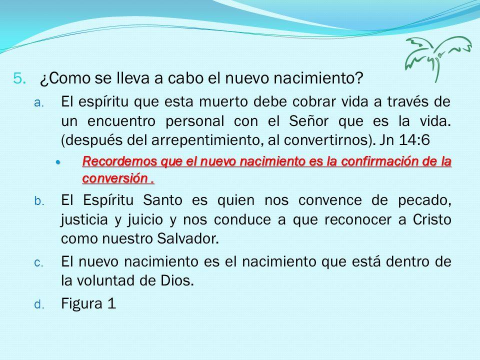 6.Frutos del nuevo nacimiento a. El que nace de nuevo es hecho hijo de Dios.