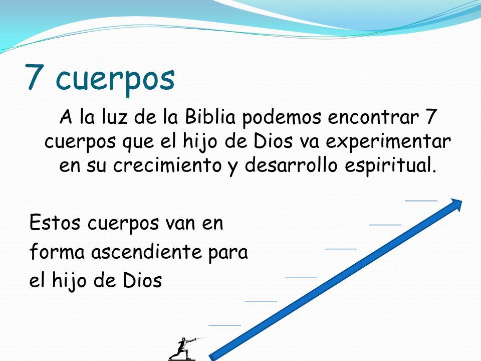 7 cuerpos A la luz de la Biblia podemos encontrar 7 cuerpos que el hijo de Dios va experimentar en su crecimiento y desarrollo espiritual. Estos cuerp