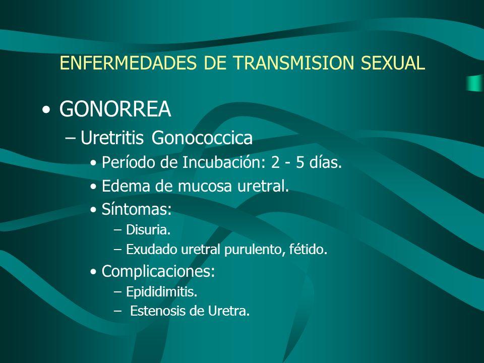 ENFERMEDADES DE TRANSMISION SEXUAL GONORREA –Uretritis Gonococcica Período de Incubación: 2 - 5 días. Edema de mucosa uretral. Síntomas: –Disuria. –Ex
