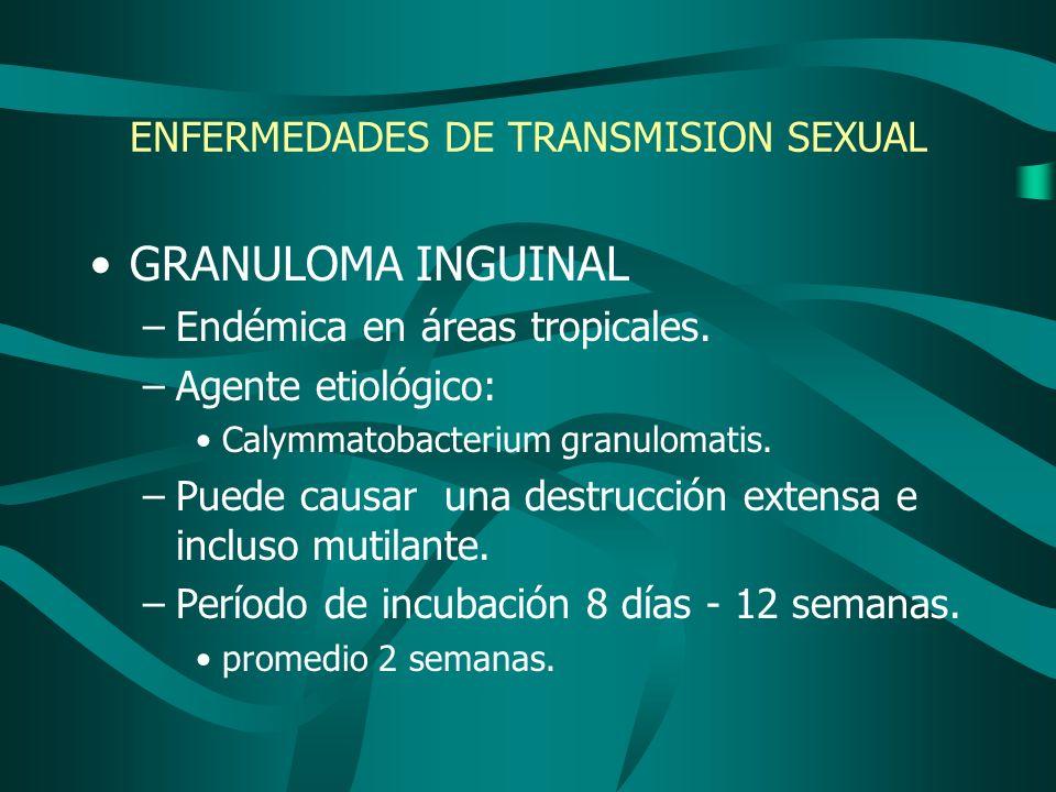 ENFERMEDADES DE TRANSMISION SEXUAL GRANULOMA INGUINAL –Endémica en áreas tropicales. –Agente etiológico: Calymmatobacterium granulomatis. –Puede causa