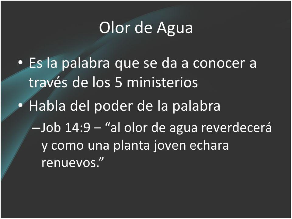 Olor de Agua Es la palabra que se da a conocer a través de los 5 ministerios Habla del poder de la palabra – Job 14:9 – al olor de agua reverdecerá y