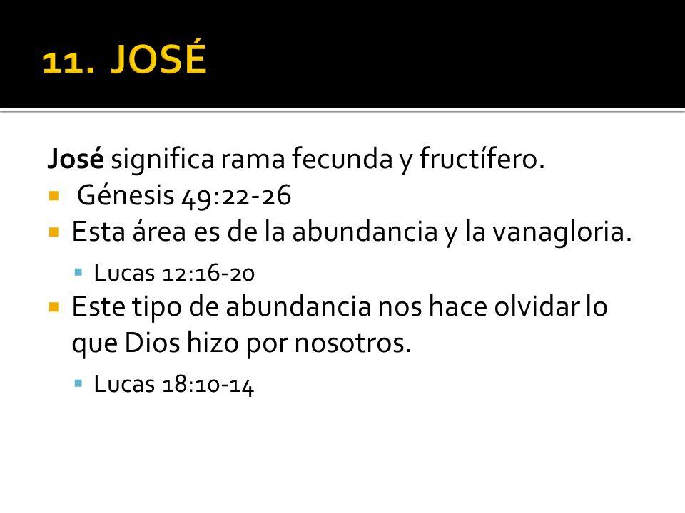 José significa rama fecunda y fructífero. Génesis 49:22-26 Esta área es de la abundancia y la vanagloria. Lucas 12:16-20 Este tipo de abundancia nos h