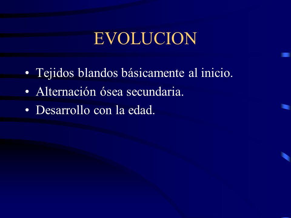 EVOLUCION Tejidos blandos básicamente al inicio. Alternación ósea secundaria. Desarrollo con la edad.