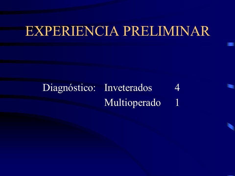 EXPERIENCIA PRELIMINAR Diagnóstico: Inveterados4 Multioperado1