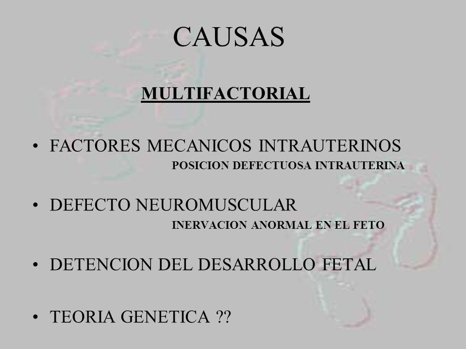 CONTRACTURA DE LIGAMENTOS Y TENDONES TIBIAL POSTERIOR SOLEO Y GEMELOS FLEXOR COMUN DE LOS DEDOS FLEXOR PROPIO DEL PRIMER DEDO FASCIA PLANTAR ADUCTOR DEL PRIMER DEDO LIGAMENTO ASTRAGALO CALCANEO CAPSULA POSTERIOR TIBIO- ASTRAGALINA YASTRAGALO-CALCANEO