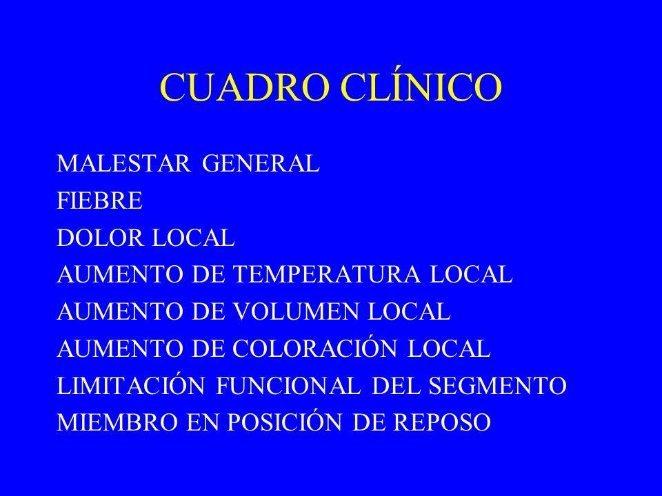 CUADRO CLÍNICO MALESTAR GENERAL FIEBRE DOLOR LOCAL AUMENTO DE TEMPERATURA LOCAL AUMENTO DE VOLUMEN LOCAL AUMENTO DE COLORACIÓN LOCAL LIMITACIÓN FUNCIO