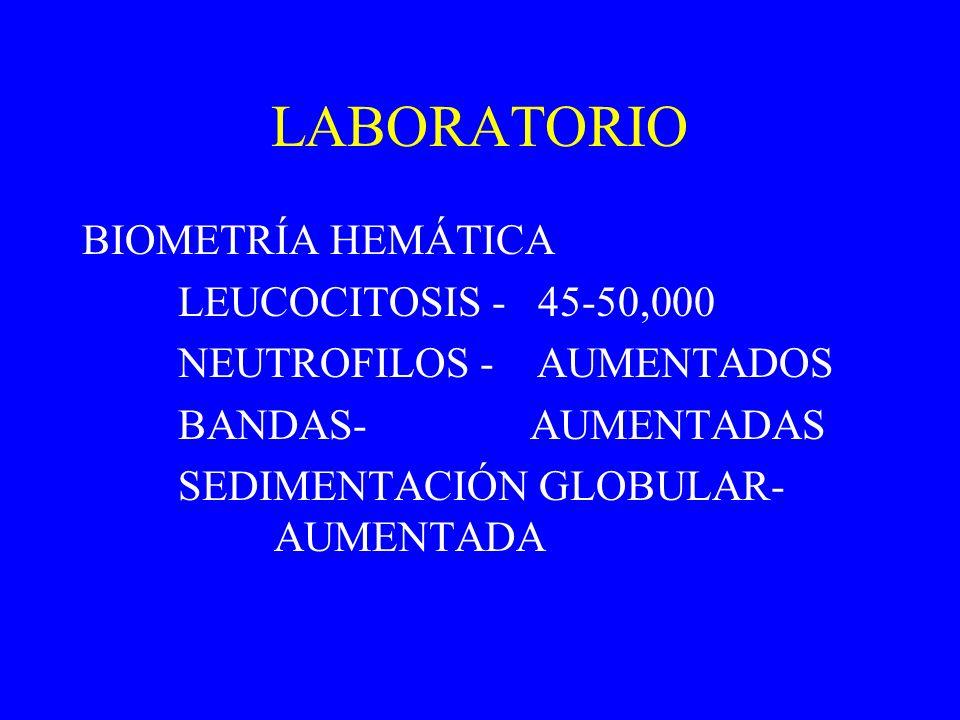 LABORATORIO BIOMETRÍA HEMÁTICA LEUCOCITOSIS - 45-50,000 NEUTROFILOS - AUMENTADOS BANDAS- AUMENTADAS SEDIMENTACIÓN GLOBULAR- AUMENTADA