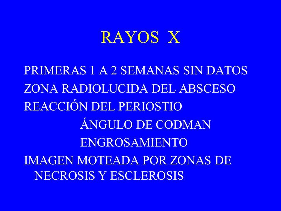 RAYOS X PRIMERAS 1 A 2 SEMANAS SIN DATOS ZONA RADIOLUCIDA DEL ABSCESO REACCIÓN DEL PERIOSTIO ÁNGULO DE CODMAN ENGROSAMIENTO IMAGEN MOTEADA POR ZONAS D