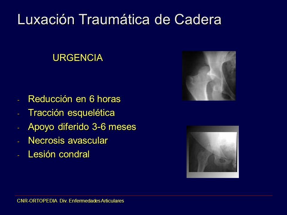 CNR-ORTOPEDIA Div. Enfermedades Articulares Luxación Traumática de Cadera URGENCIA - Reducción en 6 horas - Tracción esquelética - Apoyo diferido 3-6