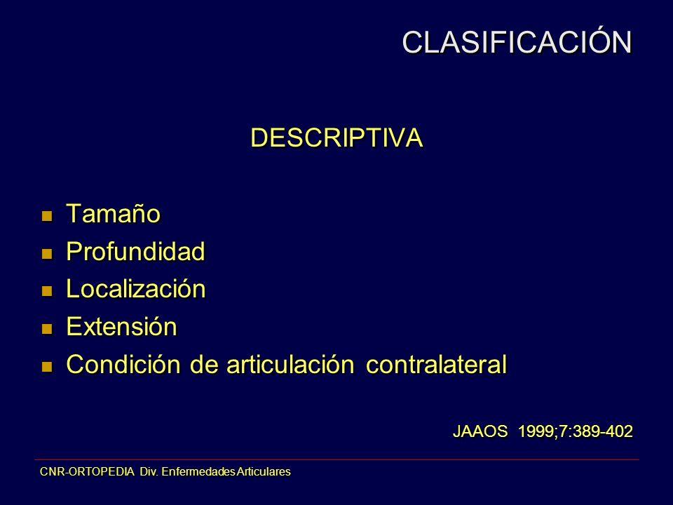DESCRIPTIVA Tamaño Profundidad Localización Extensión Condición de articulación contralateral JAAOS 1999;7:389-402 DESCRIPTIVA Tamaño Profundidad Loca
