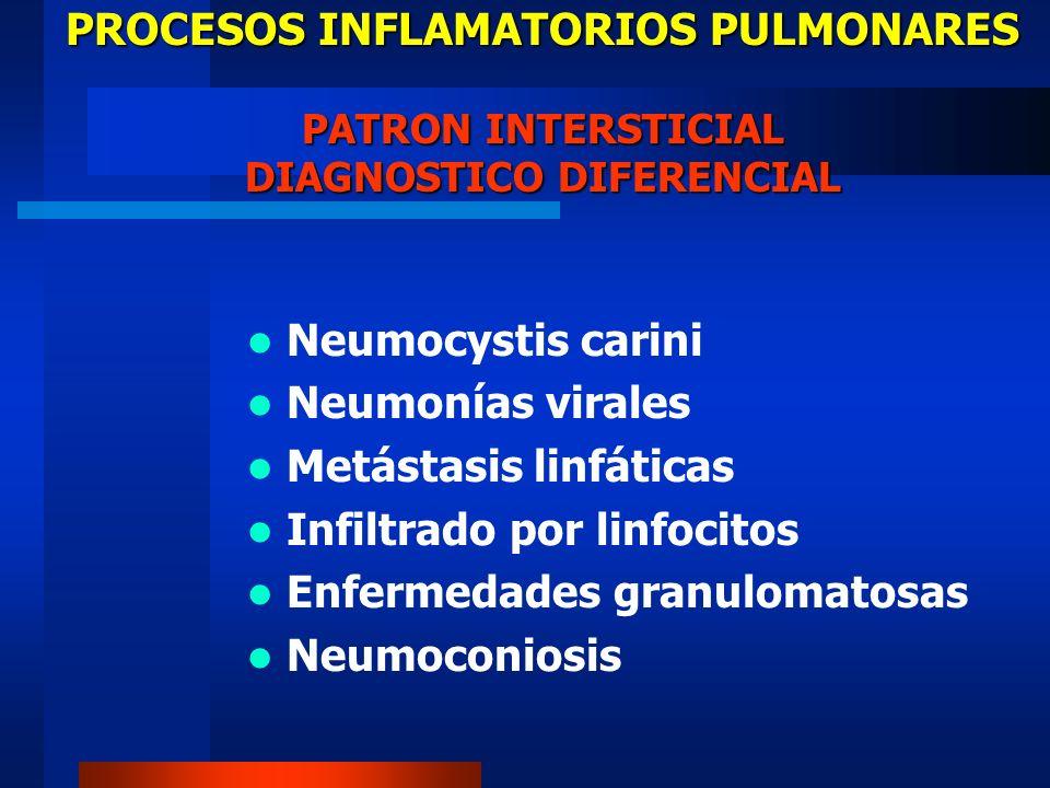 PROCESOS INFLAMATORIOS PULMONARES PATRON INTERSTICIAL DIAGNOSTICO DIFERENCIAL Neumocystis carini Neumonías virales Metástasis linfáticas Infiltrado po